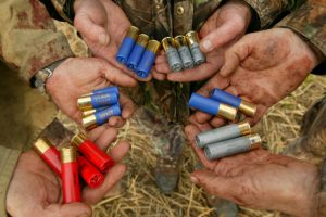 Why the shot in cartridges should be made of gold