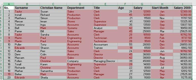 Excel worksheets Duplicates image 1