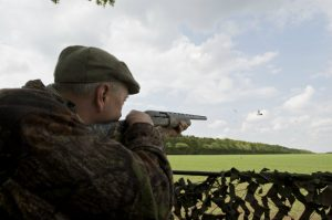 What's wrong with your pigeon shooting?