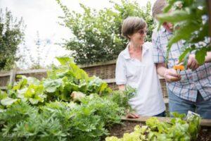 dementia-sensory-garden